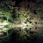 霞が城公園、るり池の夜景