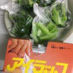 ブロッコリーの冷凍