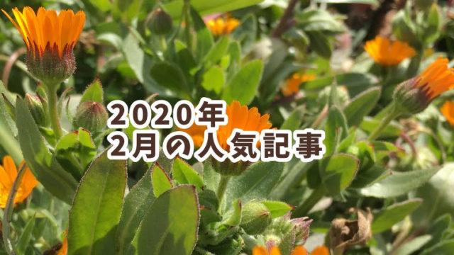 2020年2月のランキング