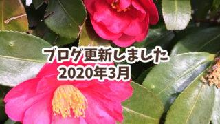 2020年3月の更新情報