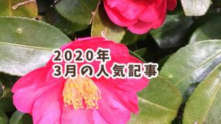 2020年3月の人気記事