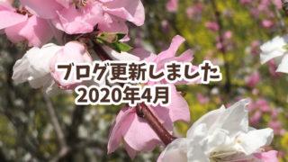 4月の更新情報