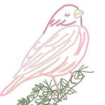 刺繍図案・ピンクの鳥
