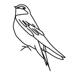 燕のイラスト