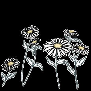 小花のイラスト